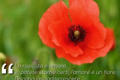 03 amore lennon