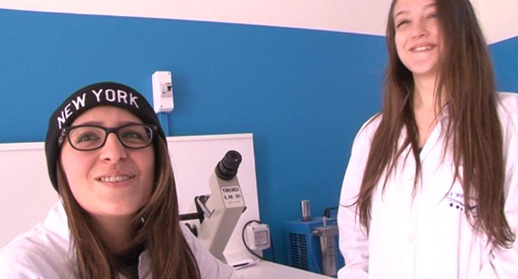 Orientamento Istituto Boccioni-Fermi di Reggio Calabria